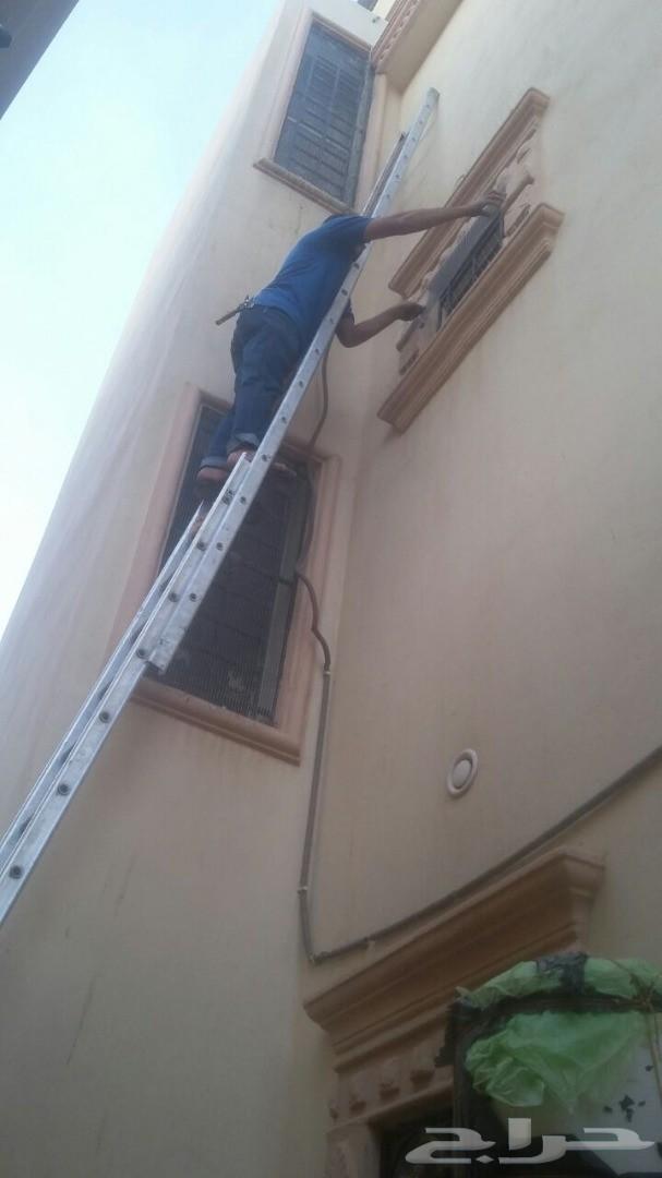 مكافحة الطيور تركيب اشواك على المنازل مكافحة