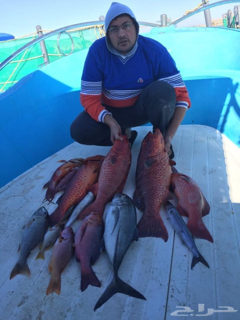 الصيدوالنزهة البحرية شواطئ ينبع رحلات يومية