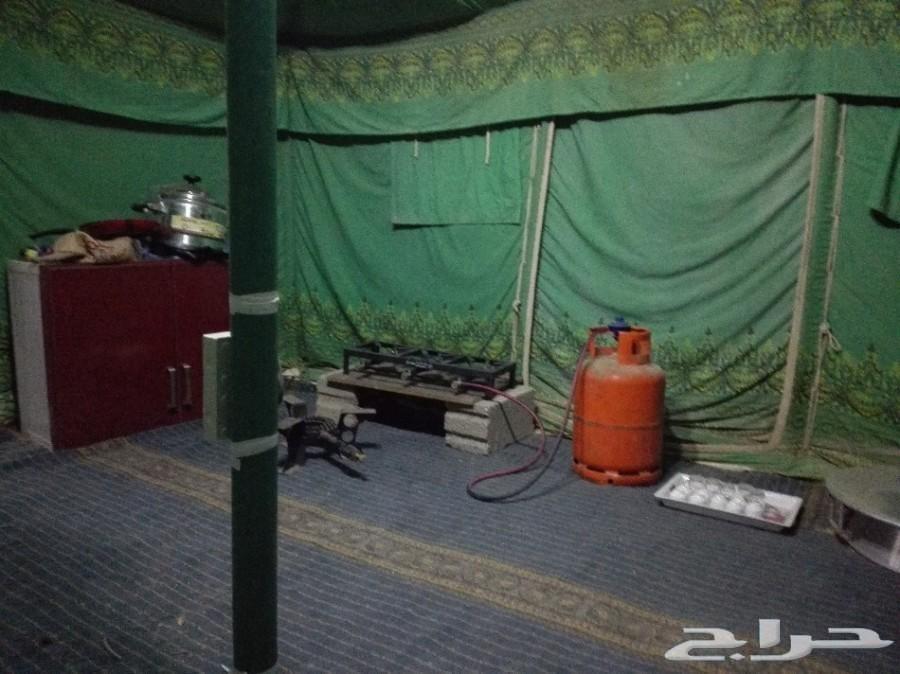 مخيم للايجار بالخرج