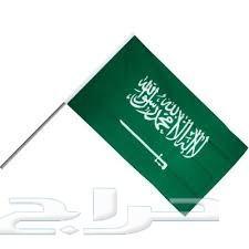 أعلام الدول و المؤسسات و الفنادق