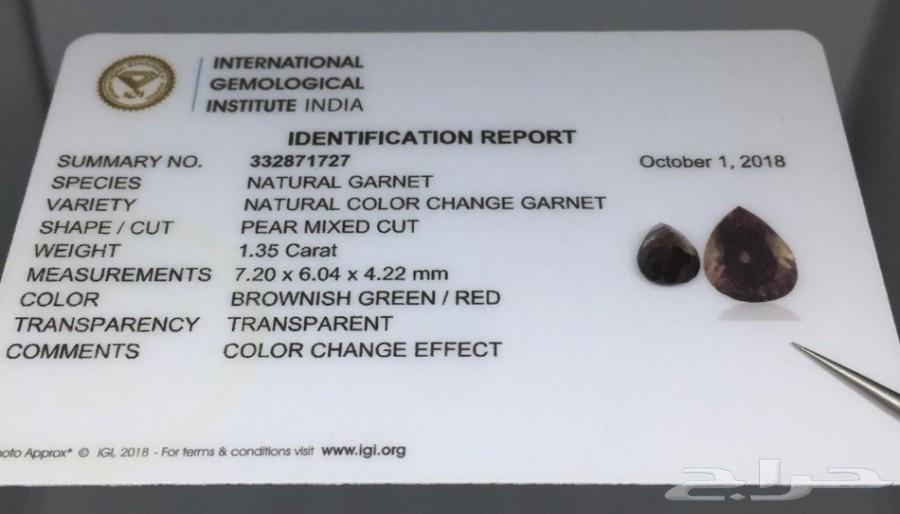جارنت لون متغير بشهادة IGI معتمده عالميا