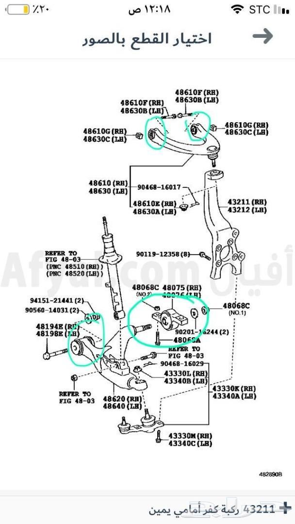 جلد مقصات وعضلات