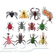 شركة مكافحة حشرات نمل صراصير فئران بق