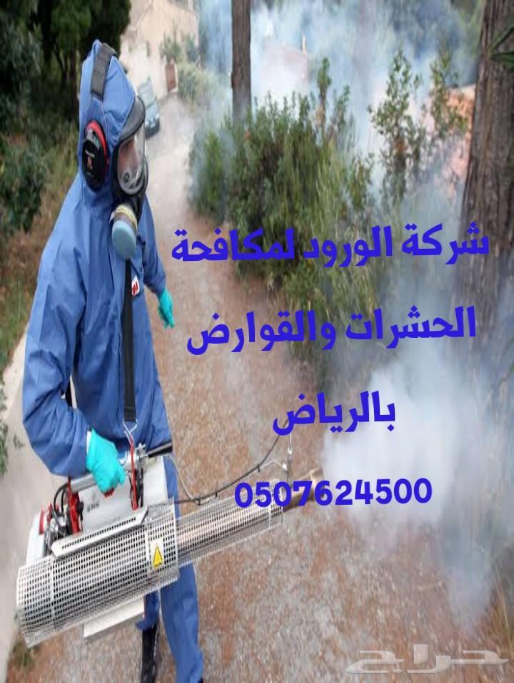 شركة تنظيف كنب سجاد شقق فلل بالرياض رش مبيدات