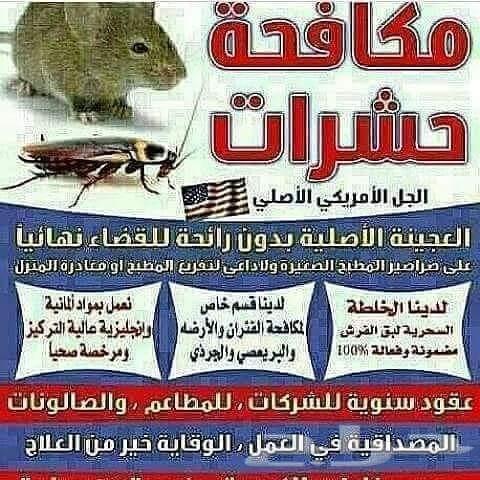 أفضل شركة مكافحة حشرات بجده الفنار