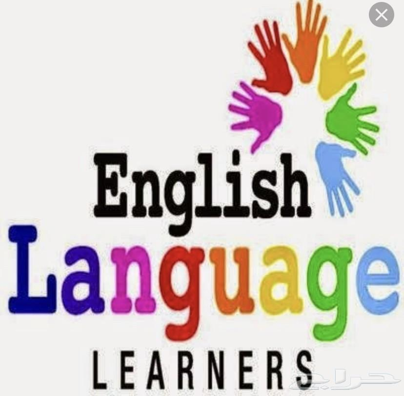 مدرس جامعي للغة الانجليزية