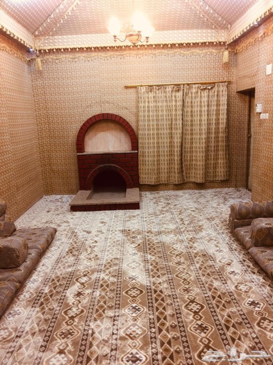 شقق واستراحات مفروشة عزاب راقية للايجار