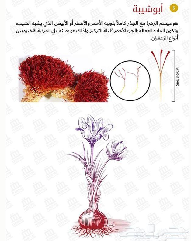 زعفران إيراني سوبر نقين فاخر