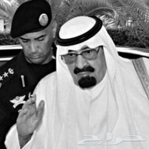 تامين سيارات باسعار رخيصه عروض اليوم الوطني