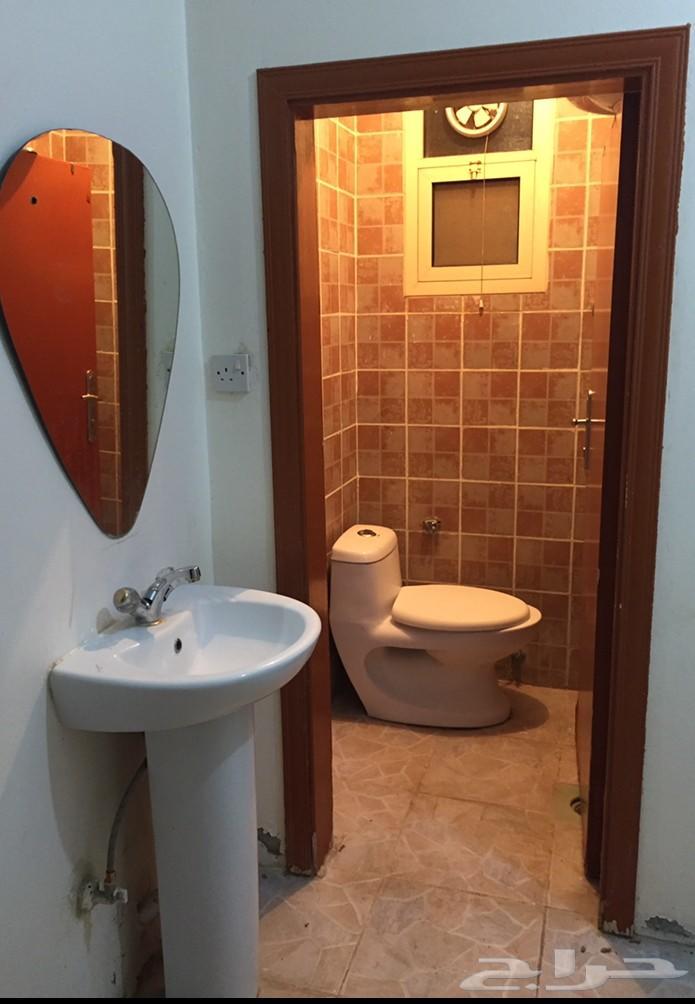 ام الحمام شقة عوائل ايجار سنوي