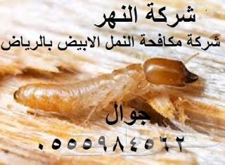 شركة مكافحة النمل الابيض بالرياض ورش دفان