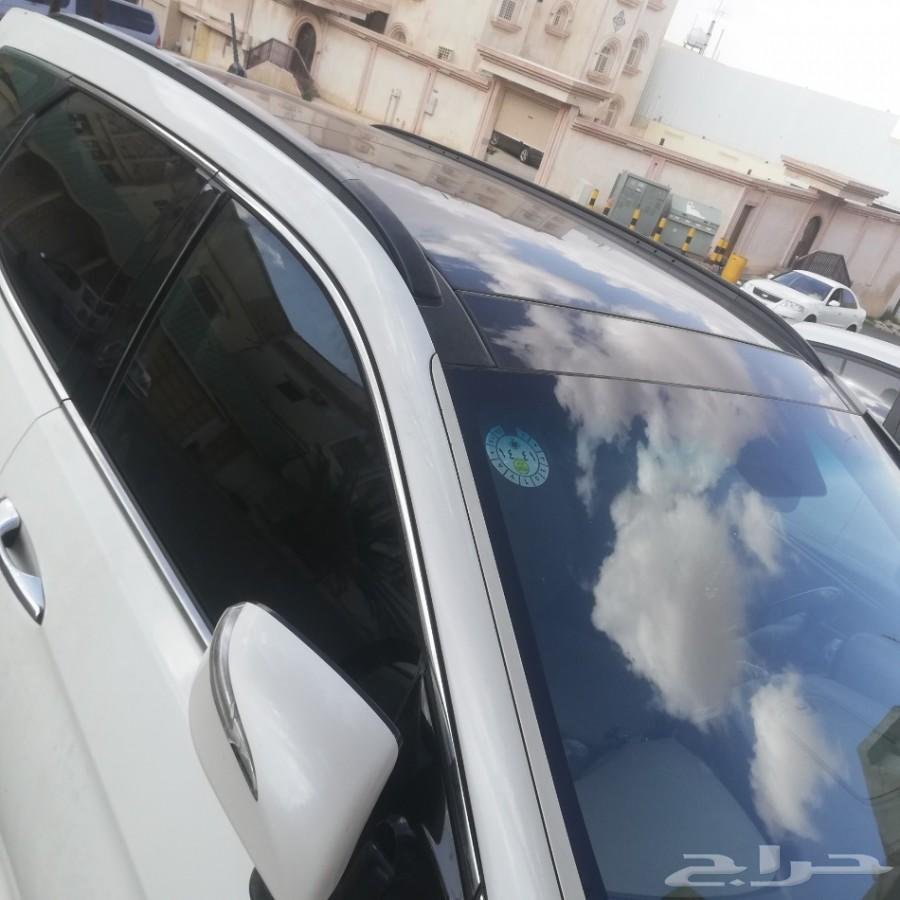 سنتافي 2014 بانوراما