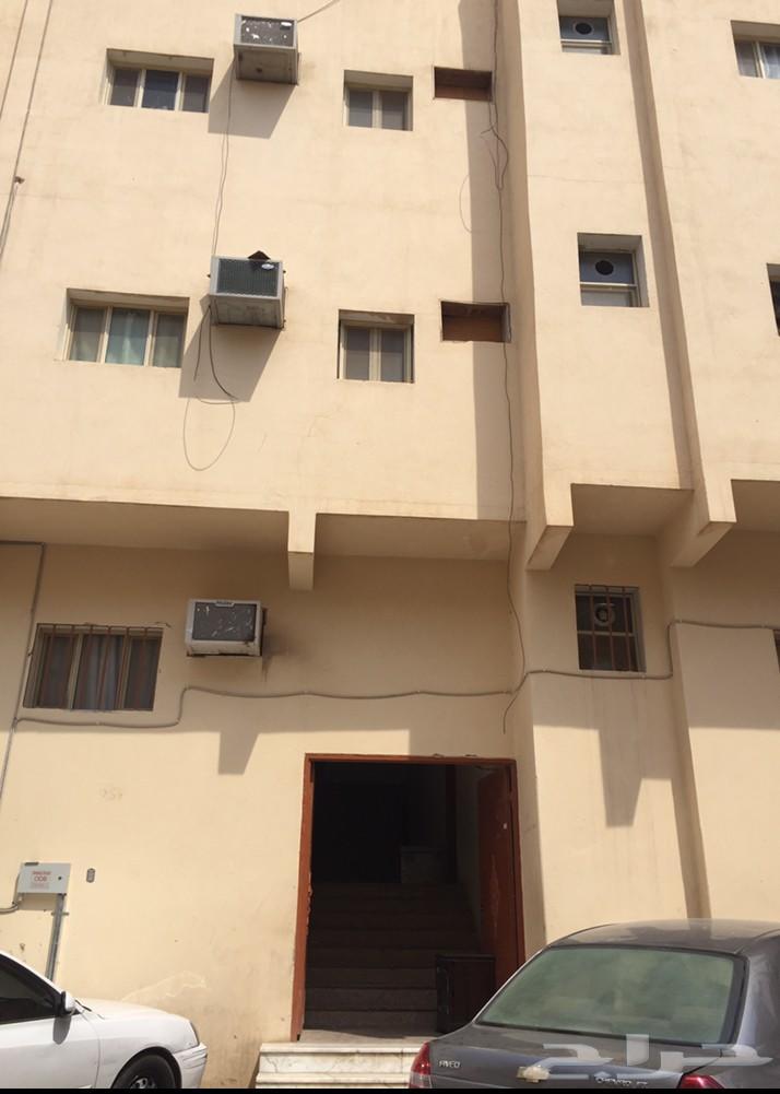 ام الحمام الشرقي شقة عوائل ايجار سنوي