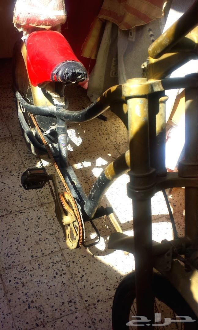 دراجة هبز أمريكي للبيع