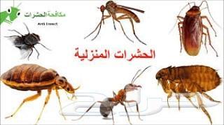 رش مبيد مكافحة حشرات رش مبيد تعقيم المنزل