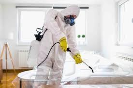 شركة رش مبيدات تعقيم حشرات النمل الصراصير بق