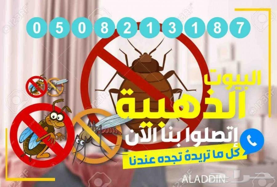 شركة مكافحة حشرات رش مبيدات الصراصير الوزغ