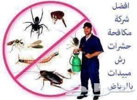 شركة مكافحة حشرات صراصير نمل نامس وزغ بورص