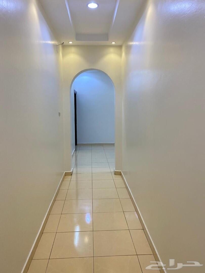 شقة عوائل للإيجار