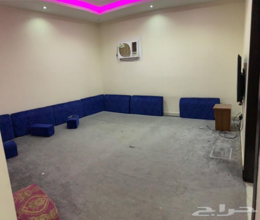 شقه عزاب مفروشة غرفة وصاله حي القادسية