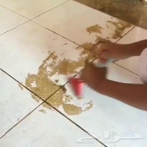 تنظيف مجالس موكيت فلل خزانات شقق كنب رش مبيد