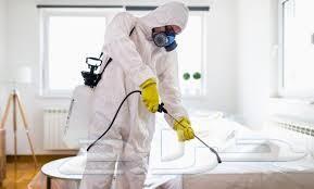 شركة رش مبيدات حشرات الصراصير النمل فئران بق