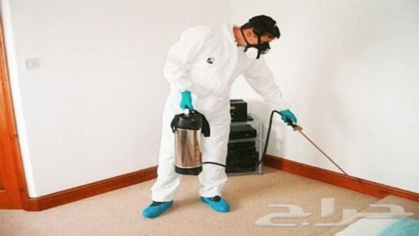 شركة رش مبيدات مكافحة حشرات صراصير نمل وزغ
