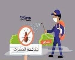 شركه رش مبيد مكافحة حشرات صراصير بتبوك السعر